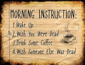 Morning Instructions: Wake Up, Wish You Were Dead, Drink... funny metal sign   305mm x 225mm  (sb)